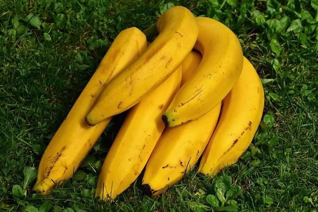 Free photo: Bananas, Fruits, Fruit, Healthy - Free Image on Pixabay - 1642706 (6100)