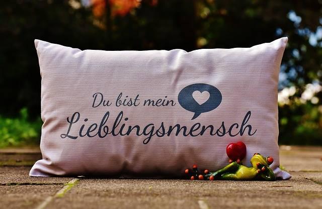 Free photo: Pillow, Love, Heart - Free Image on Pixabay - 1735382 (7037)