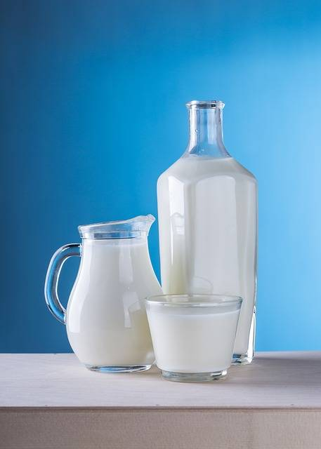 Free photo: Milk, Dairy Products, Pitcher - Free Image on Pixabay - 1887234 (7676)