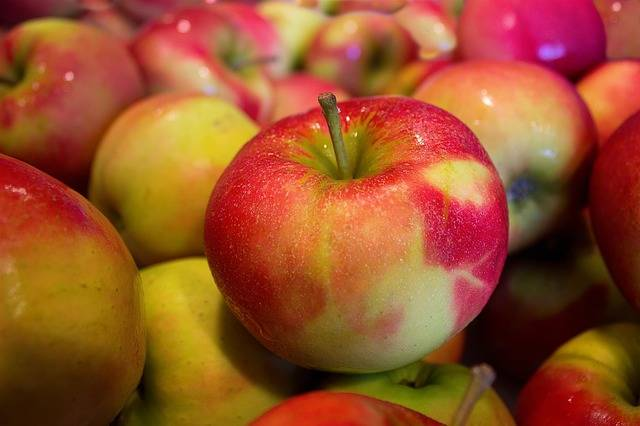 Free photo: Apples, Jonagold, Health - Free Image on Pixabay - 490474 (7679)