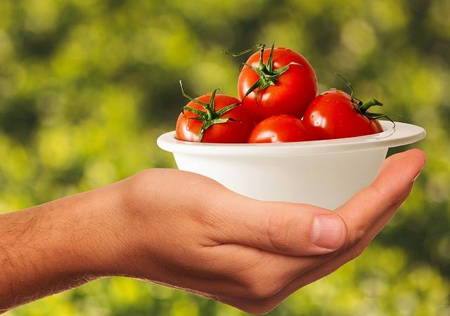 Free photo: Tomatoes, Vegetables, Healthy, Food - Free Image on Pixabay - 1993695 (8623)