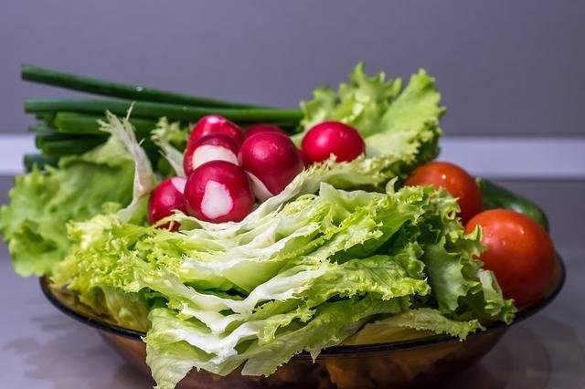 Free photo: Vegetables, Cucumber, Onion, Salad - Free Image on Pixabay - 2203301 (12330)