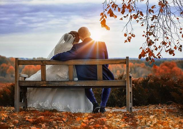 Free photo: Bride, Wedding, The Groom, Love - Free Image on Pixabay - 3191129 (23246)