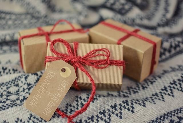 Free photo: Christmas, Gift, New Year, Holidays - Free Image on Pixabay - 3015798 (23377)