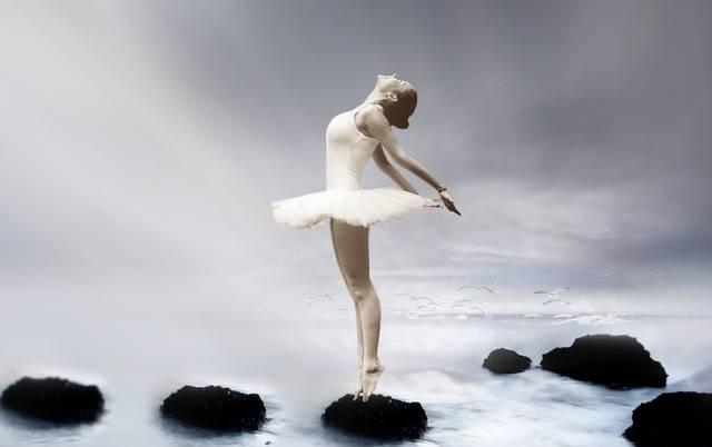 Free photo: Ballerina, Ballet Dancer, Dancer - Free Image on Pixabay - 3055155 (23622)