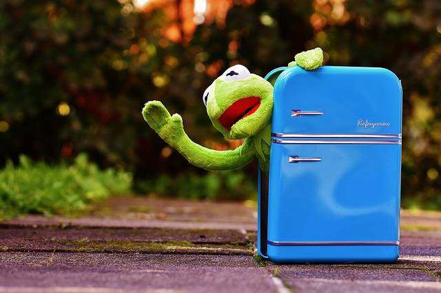 Kermit Frog Refrigerator - Free photo on Pixabay (1839)