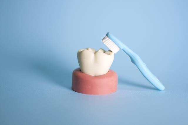 歯磨き|写真素材なら「写真AC」無料(フリー)ダウンロードOK (3730)