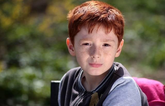無料の写真: 少年, 赤毛, そばかす, 肖像画, 美容 - Pixabayの無料画像 - 1252771 (4770)