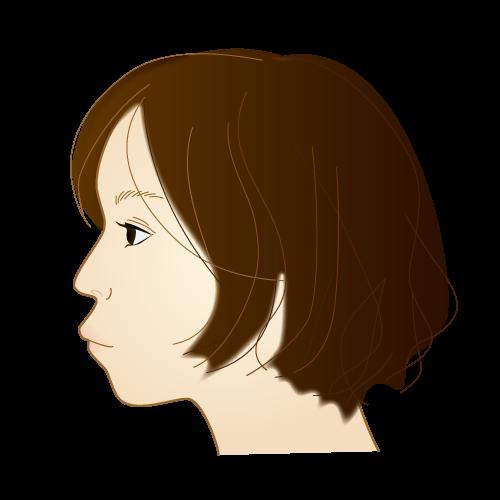 上顎前突|イラストNo.671【歯科素材.com】 (7902)