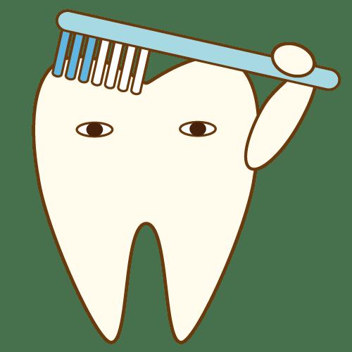 歯磨きする歯|イラストNo.474【歯科素材.com】 (10130)