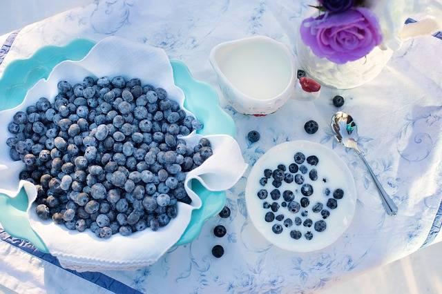 無料の写真: ブルーベリー, クリーム, デザート, 朝食, 食品, ベリー - Pixabayの無料画像 - 1576409 (11202)