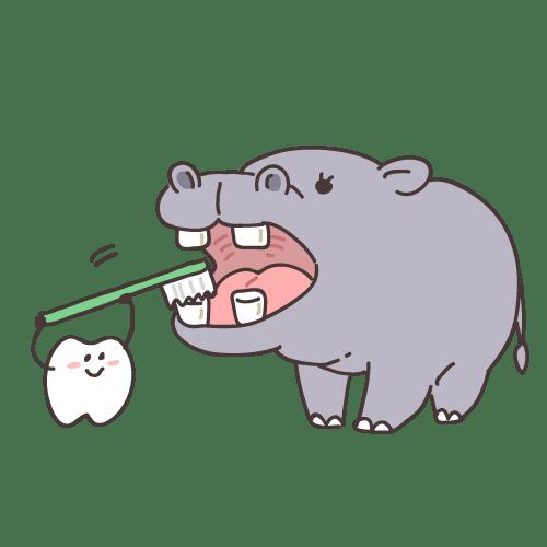 歯のキャラクターと動物の歯磨き(カバ)|イラストNo.1351【歯科素材.com】 (11665)