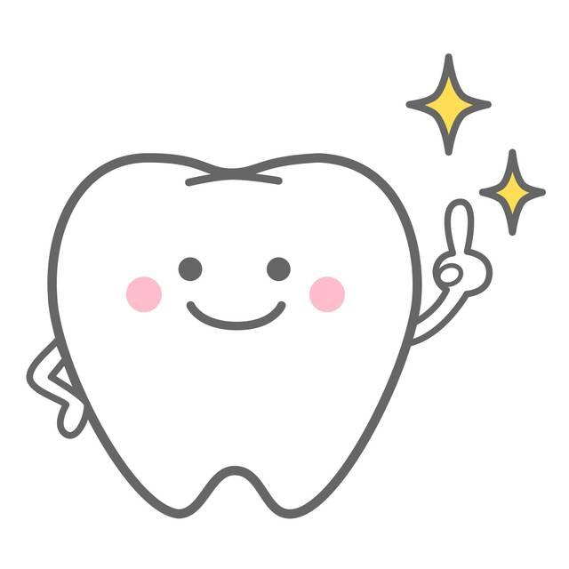 きれいな歯イラスト/無料イラストなら「イラストAC」 (11691)
