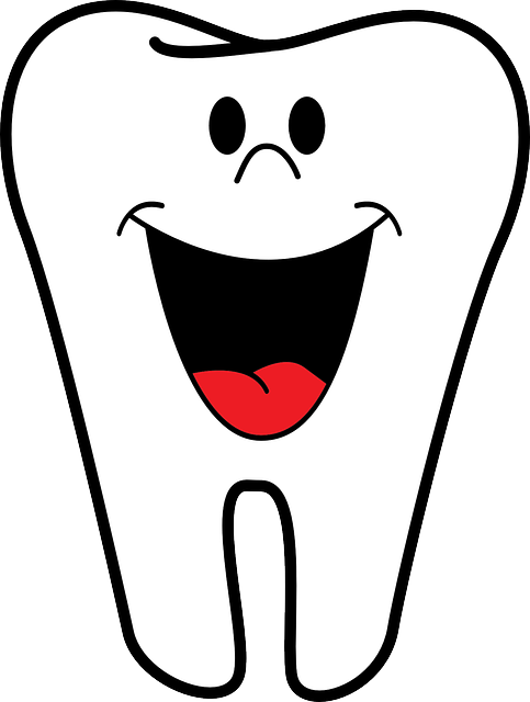 Free vector graphic: Dentist, Teeth, Tooth, Happy - Free Image on Pixabay - 158225 (99)