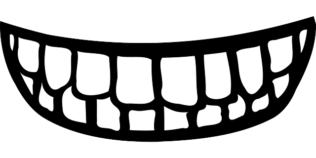 Free vector graphic: Teeth, Mouth, Smile - Free Image on Pixabay - 25600 (1358)