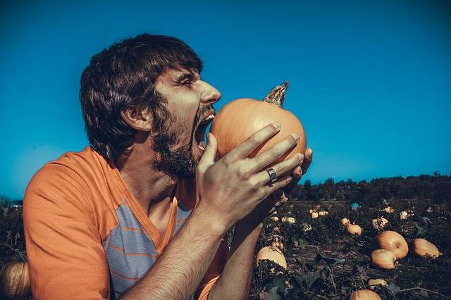 Free photo: Man, Male, Person, Model, Eating - Free Image on Pixabay - 973240 (1739)