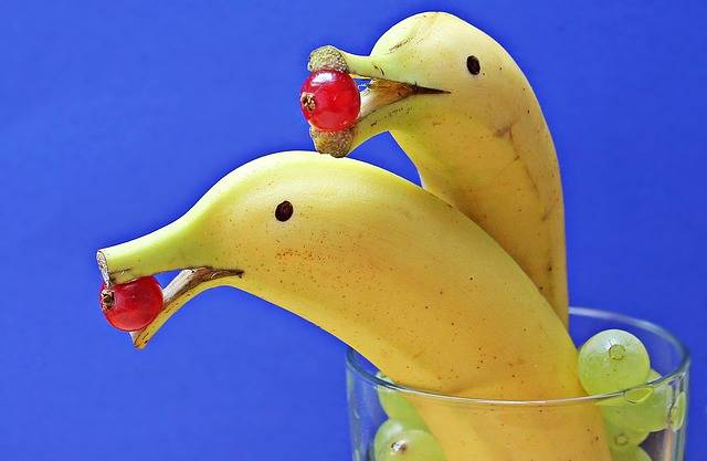 Free photo: Delfin Bananas, Banana Dolphin - Free Image on Pixabay - 1737836 (1809)