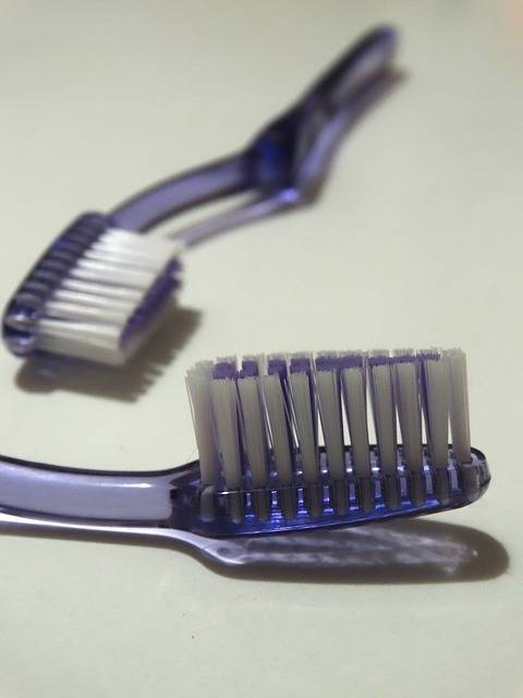 Free photo: Toothbrush, Bristles, Dental Care - Free Image on Pixabay - 592103 (3336)