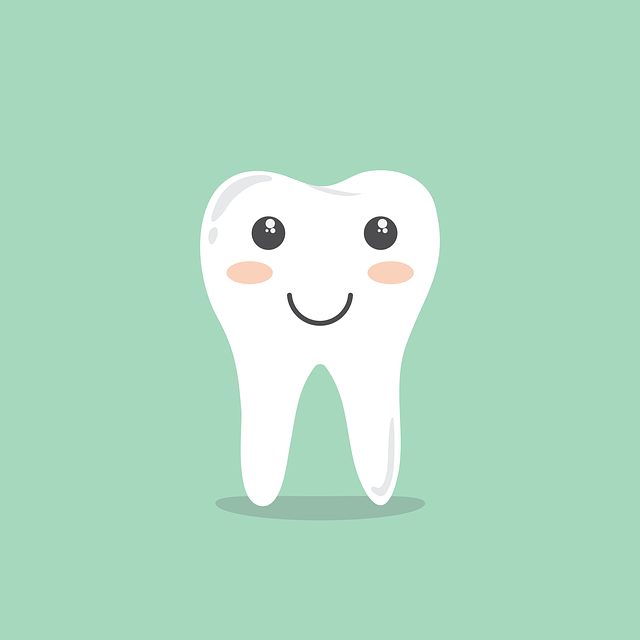 Free vector graphic: Teeth, Cartoon, Hygiene, Cleaning - Free Image on Pixabay - 1670434 (4846)