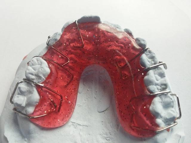 Free photo: Dentist, Orthodontics, Dental Rail - Free Image on Pixabay - 542266 (5319)