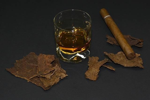 Free photo: Cigar, Tobacco Leaves - Free Image on Pixabay - 1473697 (5687)