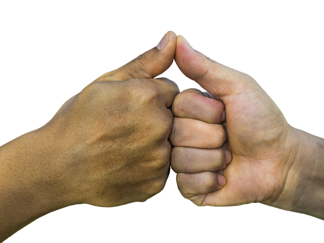 Free photo: Hands, Thumb, Promise, Finger - Free Image on Pixabay - 1923185 (6806)
