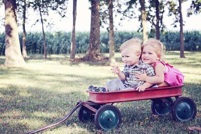 Free photo: Youth, Children, Wagon, Child - Free Image on Pixabay - 640094 (9423)
