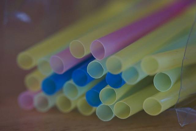 Free photo: Drinking Straw, Straws, Tube - Free Image on Pixabay - 235225 (9483)