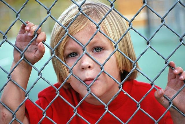 Free photo: Boy, Looking, Fence, Chain Link - Free Image on Pixabay - 529065 (11092)