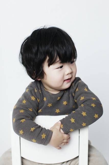 Free photo: Baby Boy, Children, Man, Oriental - Free Image on Pixabay - 2081553 (11160)