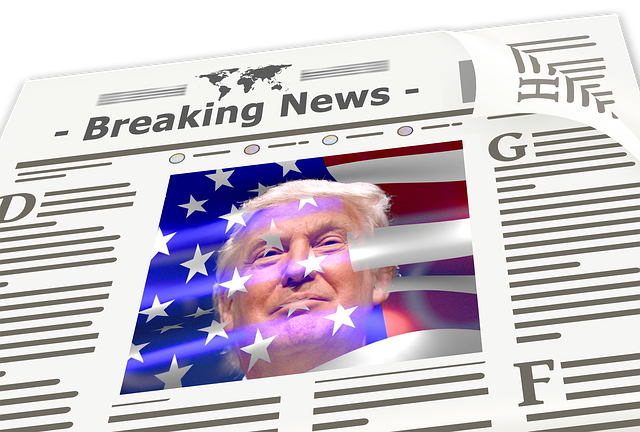 Free illustration: Newspaper, News, Trump, Donald, Usa - Free Image on Pixabay - 1959739 (12046)