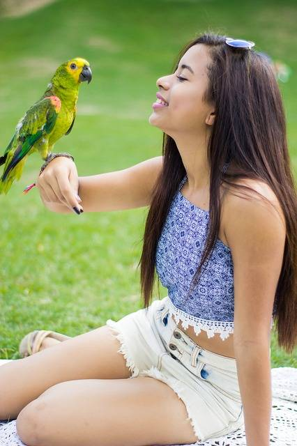 Free photo: Girl, Parrot, Animal, Joke - Free Image on Pixabay - 2889881 (12069)