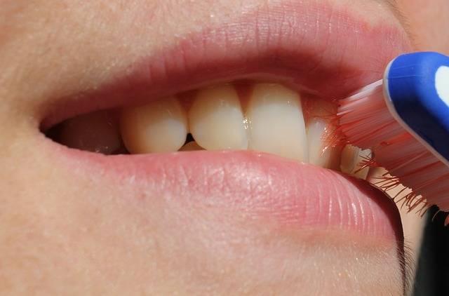 Free photo: Toothbrush, Smile, Teeth, Mouth - Free Image on Pixabay - 2696810 (12149)