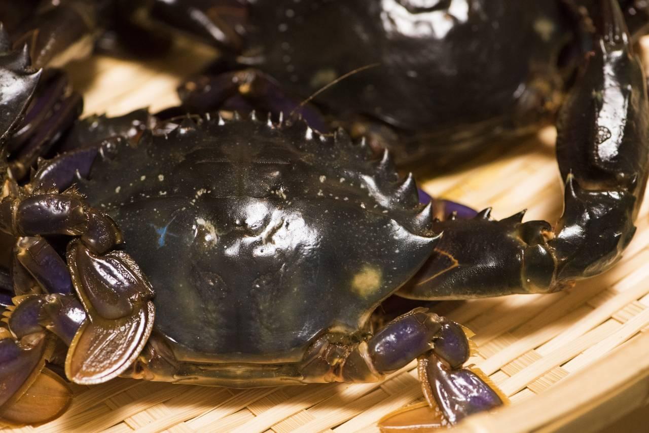 キンプリ平野、アレルギーあるのに蟹料理を食べ続け死にかける「危なかったです」