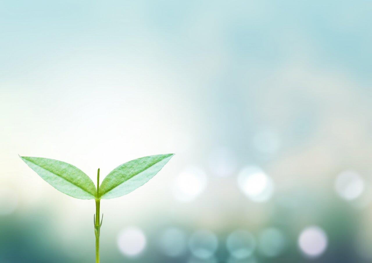 平野紫耀、道枝駿佑の成長に驚き「気付いたら大人になってました」