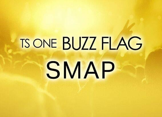 """平成最後の日に""""平成を彩った国民的アイドル""""SMAPを2時間大特集!「TS ONE BUZZ FLAG」"""