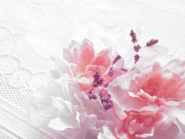 花|写真素材なら「写真AC」無料(フリー)ダウンロードOK (2073)