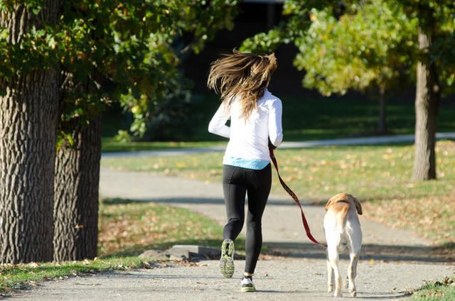 [フリー写真] 犬と一緒にジョギングしている女性の後ろ姿でアハ体験 -  GAHAG | 著作権フリー写真・イラスト素材集 (3329)