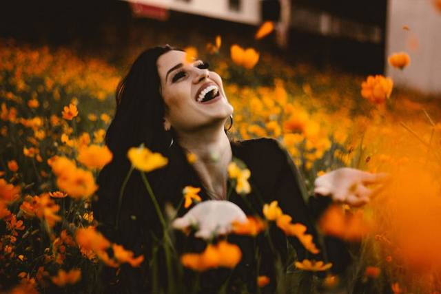 Free image of flower, orange, petal - StockSnap.io (3480)