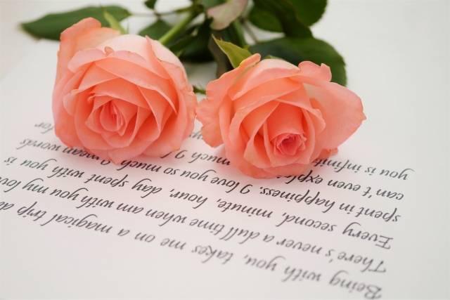 薔薇|写真素材なら「写真AC」無料(フリー)ダウンロードOK (5747)