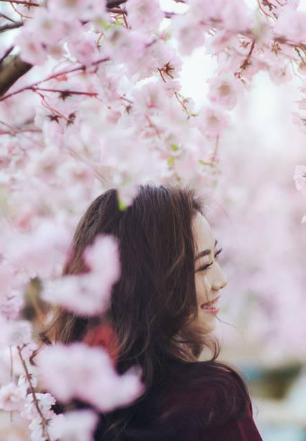 [フリー写真] 桜の花と笑顔の女性の横顔でアハ体験 -  GAHAG | 著作権フリー写真・イラスト素材集 (5889)