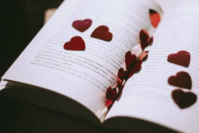 Free image of book, petals, rose - StockSnap.io (6745)