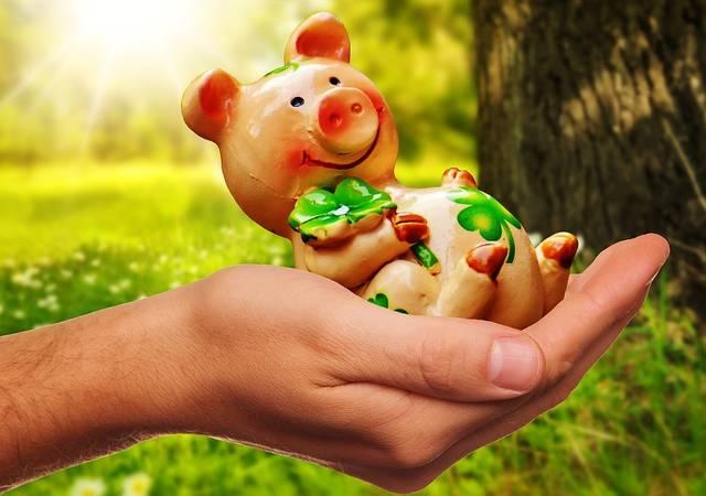 無料の写真: がんばって, 一握りの幸せ, ピグレット, 幸運な豚, お祝いの言葉 - Pixabayの無料画像 - 1993688 (6989)