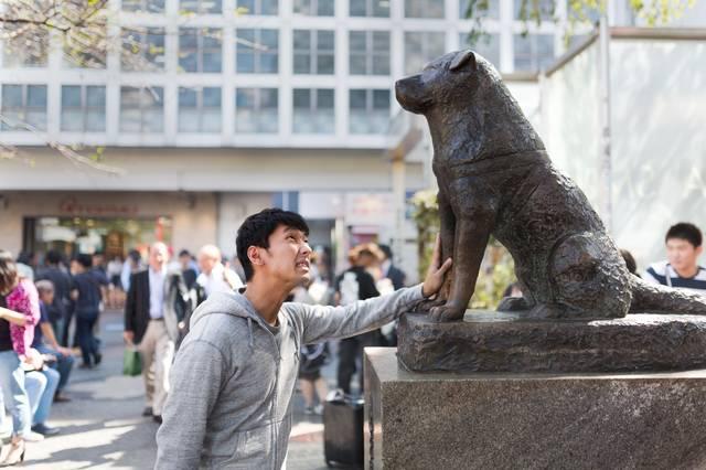 女性を口説けず犬の銅像に慰めてもらうナンパ師|フリー写真素材・無料ダウンロード-ぱくたそ (7751)