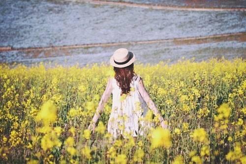 菜の花畑の間に立っている女の子のフリー写真画像|GIRLY DROP (10407)