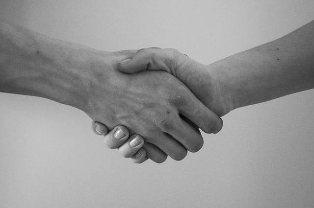 無料の写真: 手, ご挨拶, 契約, 左手で握手 - Pixabayの無料画像 - 819279 (13706)