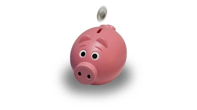 Free illustration: Piggy Bank, Coin, Pink, Piggy, Bank - Free Image on Pixabay - 1056615 (1429)