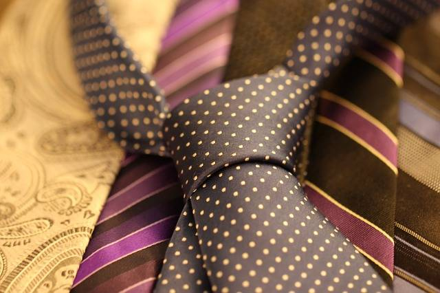 Free photo: Cravat, Tie, Clothing, Suit - Free Image on Pixabay - 987584 (1679)