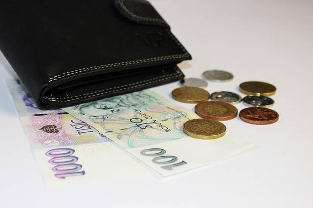 Free photo: Money, Wallet, Banknotes - Free Image on Pixabay - 1934037 (2547)