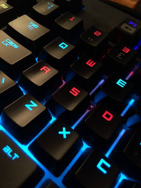 Free photo: Keyboard, Gamer, Computer - Free Image on Pixabay - 1235105 (2757)